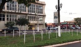 Cruzes em frente à Câmara lembram mortos pela Covid