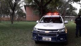 Guarda Municipal em um ano já prendeu 240 foragidos da justiça.