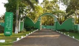 Seis douradenses morrem com Covid-19, segundo a Secretaria de Saúde
