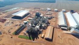 Indústria de etanol recebe isenção de imposto para instalação em Dourados