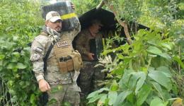 Agência antidrogas destrói mais 9,5 toneladas de maconha na fronteira