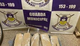 Guarda Municipal apreende 29 tabletes de maconha na rodoviária