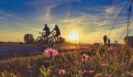 Aprovado projeto de Lei que promove a conscientização e a proteção do ciclista em Mato Grosso do Sul