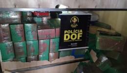 Caminhão que seguia para São Paulo com três toneladas de maconha foi apreendido pelo DOF durante  Operação