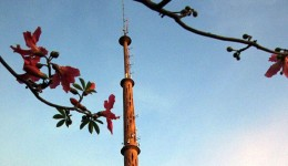 Massa de ar seco garante quinta-feira de céu aberto e temperaturas elevadas