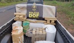 Veículo abandonado com mais de 250 quilos de maconha foi apreendido pelo DOF durante Operação