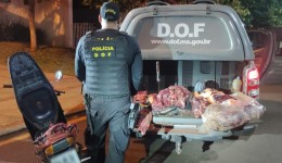 Carne bovina sem comprovação de origem foi apreendida pelo DOF durante Operação