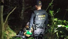 Mais de 70 quilos de maconha abandonados foram apreendidos pelo DOF durante Operação