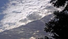 Meteorologia prevê frio intenso e geada para a segunda quinzena de julho