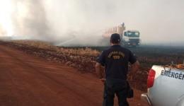 Em ação conjunta Defesa Civil e Corpo de Bombeiros atuam no combate ao incêndio próximo a MS-379