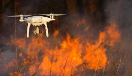 Usina sucroenergética é multada em R$ 2,550 mi por incêndio em matas