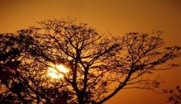 Calor ganha força em Mato Grosso do Sul no feriado da Independência