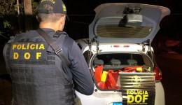 DOF apreende drogas em Douradina