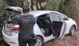 DOF apreende mais de 300 kg de drogas durante operação