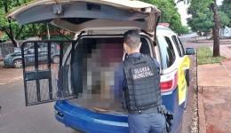 Guarda Municipal prende homem que descumpriu medida protetiva e ameaçou ex-esposa