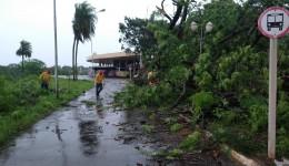 Alan Guedes decreta situação de emergência em decorrência das fortes chuvas