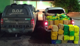 Camionete com quase uma tonelada e meia de maconha foi recuperada pelo DOF